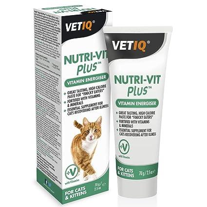 Nutri-Vit Suplemento vitaminas para gatos: Amazon.es: Productos ...