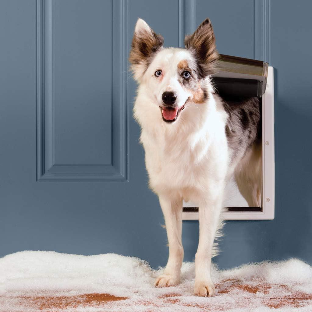 best in wall dog doors 6