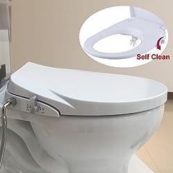 Swell Top 10 Best Bidet Toilet Seat Reviews 2019 Guide Evergreenethics Interior Chair Design Evergreenethicsorg