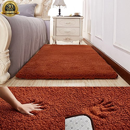 Ultra Soft Fluffy Rugs For Living Room, HIGOGOGO 70 By 78 Inch Soft Bedroom  Rugs