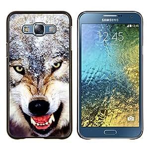 YiPhone /// Prima de resorte delgada de la cubierta del caso de Shell Armor - Angry dientes feroz Lobo Invierno Nieve - Samsung Galaxy E7 E700