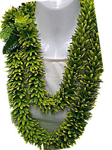 Hawaiian Rose Green Two Tone 60