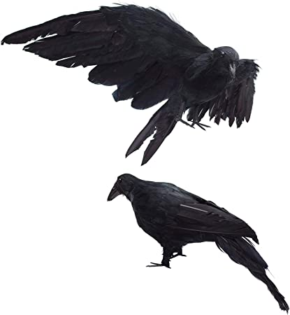 Amazon.com : 2-Pack Realistic Crows Lifesize Extra Large Handmade Black Feathered Crow for Halloween Decorations Birds, L (13 inch+12 inch) : Garden & Outdoor