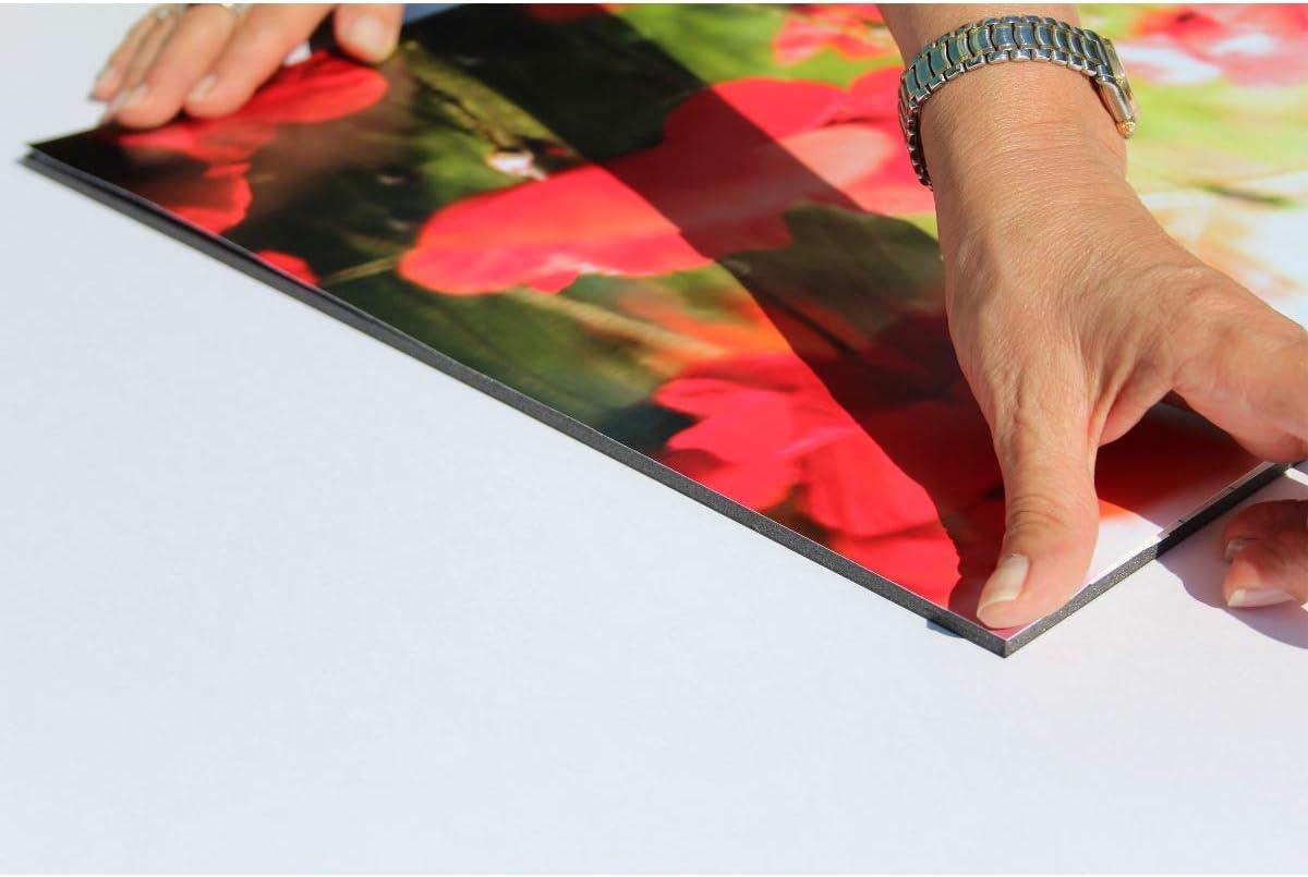 f/ür Fotos und Pr/äsentationen 20x30cm alle Gr/ö/ßen Foamboard Schaumstoffplatte 5 St/ück g/ünstige Vorteilspackungen Leichtschaumplatte schwarz selbstklebend 10mm stark