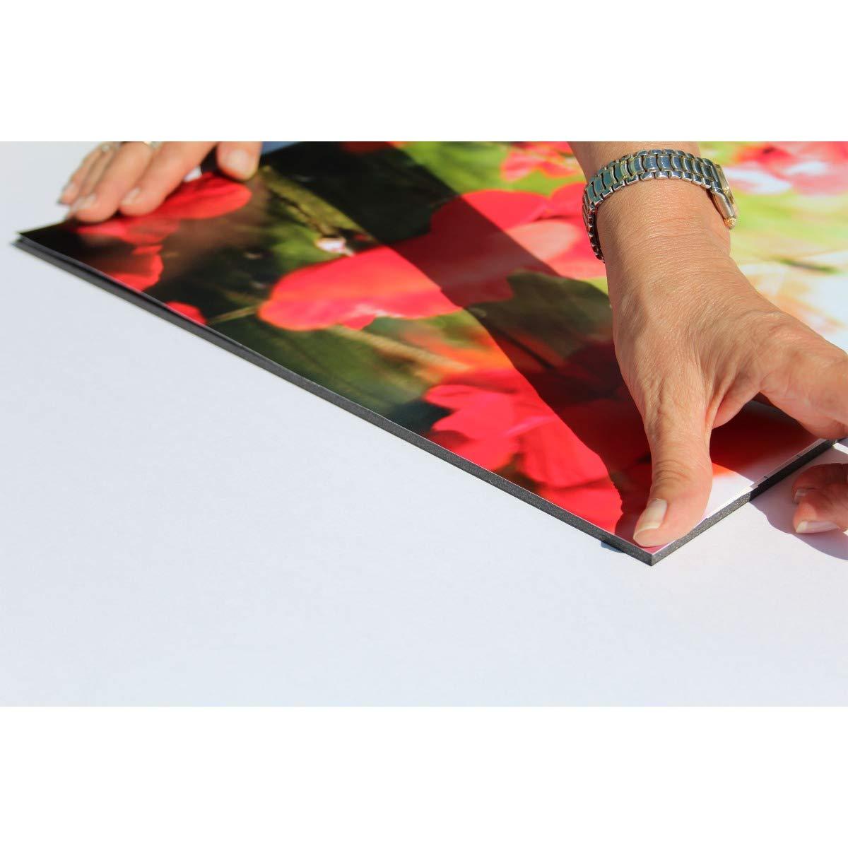 g/ünstige Vorteilspackungen Leichtschaumplatte schwarz selbstklebend 10mm stark f/ür Fotos und Pr/äsentationen alle Gr/ö/ßen 80x100cm Foamboard 1 St/ück Schaumstoffplatte