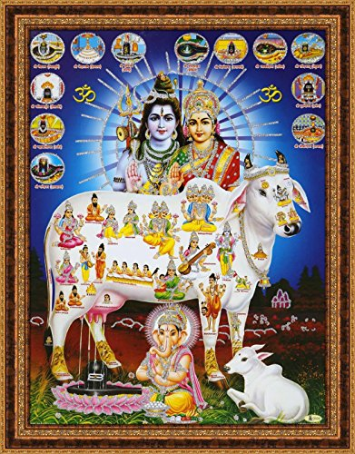 Avercart Kamdhenu / Kamadhenu - The Sacred Cow / Hindu Holy Cow Poster 12x16 inch with Photo Frame (30x40 cm framed) by Avercart