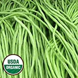 Everwilde Farms - 1/4 Lb Organic Yard Long Bean – Green Yard Long Bean Seeds - Gold Vault