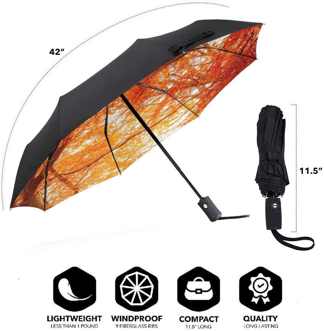 XGXC Fall Automatic Tri-fold Umbrella Outer Print One Size