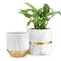 HOMENOTE White Ceramic Flower Pot Garden Planters 6/4.8 inch Pack 2 Indoor, Plant Containers with Marble Texture and…