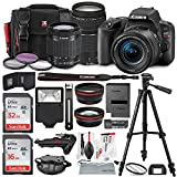 Canon EOS Rebel SL2 DSLR Wi-Fi Camera with EF-S 18-55mm STM Lens (Black) Bundle w/EF 75-300mm f/4-5.6 III Lens + 32&16GB + Xpix Tripods & Cleaning Kit + Deluxe Bundle