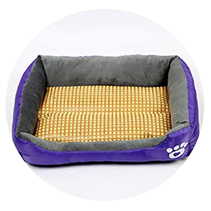 Amazon.com : Mr Z Waroom Multi-Color Waterproof Cat Dog Pet ...