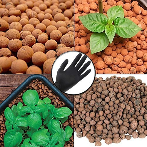 Clay Grow Rocks (HYDROPONIC CLAY PEBBLES HYDROTON GROW MEDIA EXPANDED POROUS ROCK 4 Liter / Quart Bag /W THCITY LIGHTNING GLOVES by Hydrofarm)