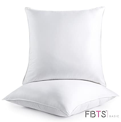 Amazon FBTS Prime Foam Throw Pillow Insert 40x40 Inch Pack Of Stunning Bolster Pillow Inserts Foam