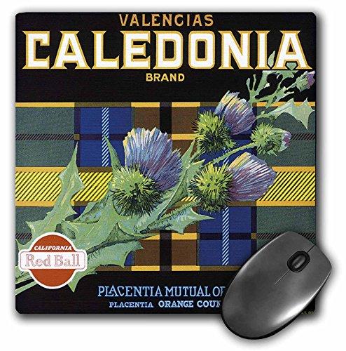 - 3dRose BLN Vintage Fruit and Vegetable Crate Labels - Vintage Caldeonia Brand Crate Label - MousePad (mp_129858_1)