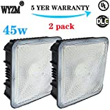 WYZM 2 Pack of 45Watt LED Canopy Lights,NO Weather Proof 9.5'' x 9.5'',120V 277V for Playground, Gym, Warehouse, Garage,Backyard (Canopy-45W)