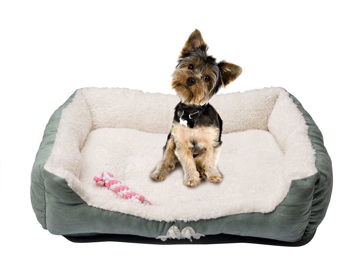 HappyCare Textiles 047393528445 Rectangle Pet Bed with Dog Paw Printing Toys, 25'' x 21'', Brown/Coffee