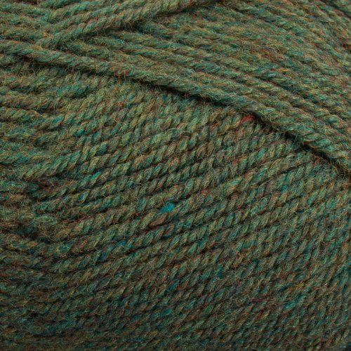 Worsted Heathers Plymouth Encore (Plymouth (1-Pack) Encore Worsted Yarn Meadow Heather 1446-1P)