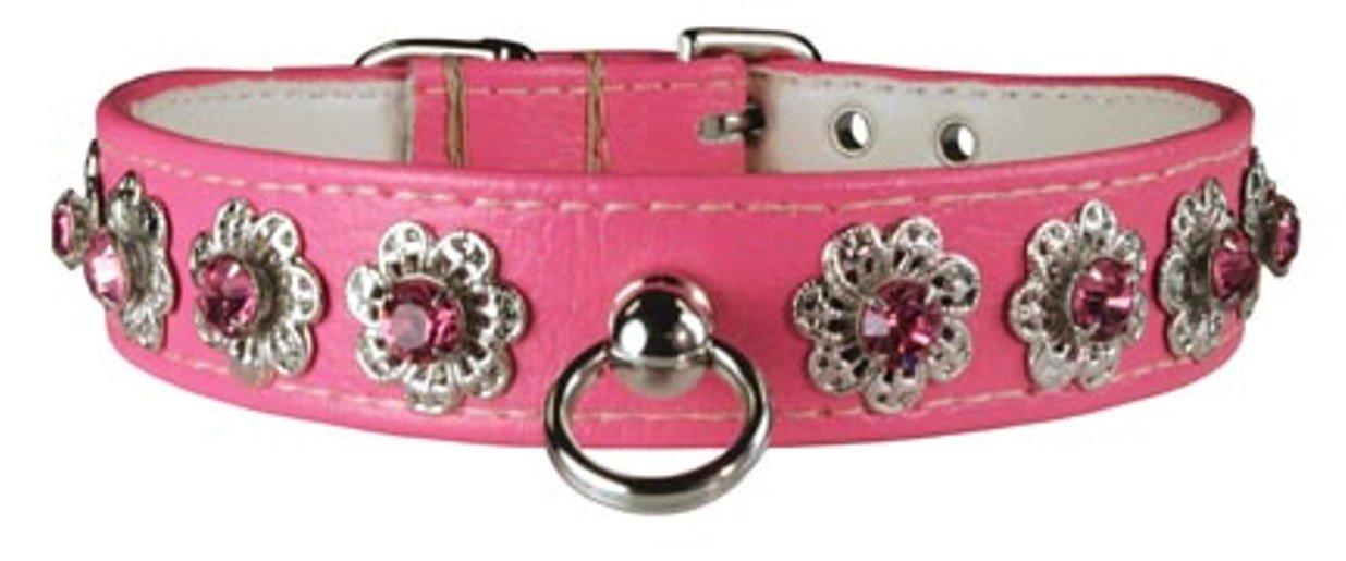 OmniPet Majestic Starburst Dog Collar, 3 4  x 12 , Pink