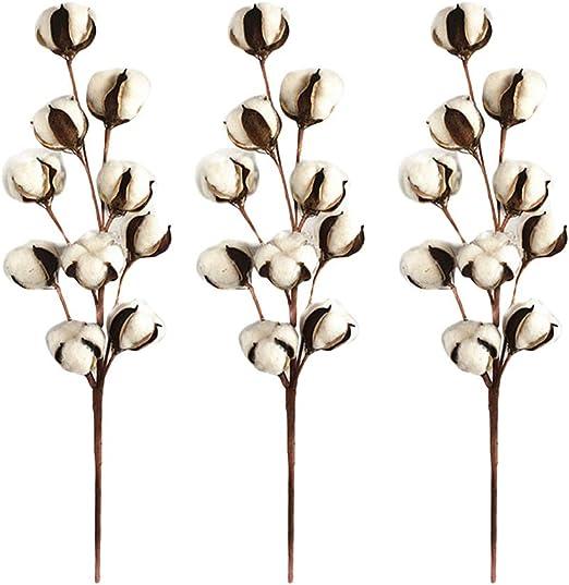 Wmaple Nowear 3 Pcs Artificial Diez Cabezas Rama de Algodon Natural Kapok Flor Seca Flores Artificiales Decoración Jarrones para Hogar Bodas Fiestas Navidad Halloween: Amazon.es: Hogar