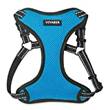 Best Pet Supplies Voyager - Fully Adjustable Step-In Mesh Harness with Reflective 3M Piping (Turquoise, Small)