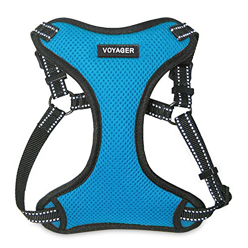 Voyager Step-in Flex Dog Harness - All Weather Mesh, Step in Adjustable Harness for Small and Medium Dogs by Best Pet Supplies - Turquoise, Small (Best Harness For Deep Chested Dogs)