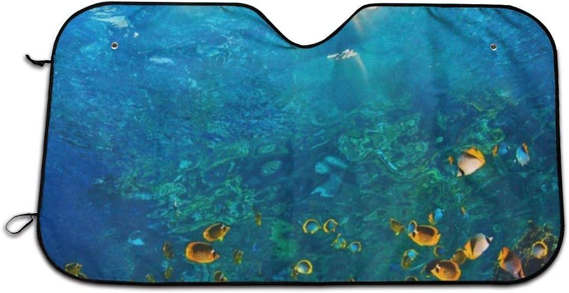 Pare-Brise de Voiture en Prime Gardez Le v/éhicule au Frais Prot/égez Votre Voiture Contre la Chaleur et l/éblouissement du Soleil Protecteur de Pare-Sol HHJJI Pare-Brise Nature Ocean Sea Life