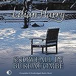 Snowfall in Burracombe | Lilian Harry