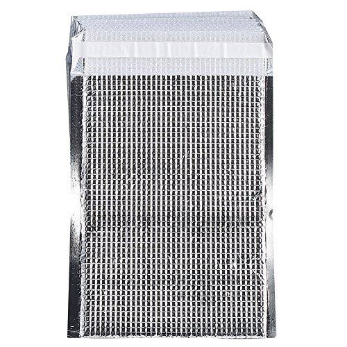 Dilwe - Bolsas aislantes (10 Unidades, Reutilizables, de Aluminio, para Picnic, etc, Plateado, 20 * 25cm