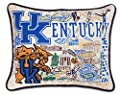 Catstudio NCAA Collegiate Throw Pillow