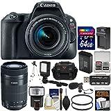 Canon EOS Rebel SL2 Wi-Fi Digital SLR Camera & EF-S 18-55mm (Black) & 55-250mm is STM Lens + 64GB Card + Case + Flash + Battery & Charger + Tripod Kit