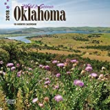 Oklahoma, Wild & Scenic 2018 7 x 7 Inch Monthly Mini Wall Calendar, USA United States of America Southwest State Nature