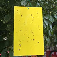 20Pcs Double-Sided Yellow Sticky Traps for Flying Plant Insect Fly Glue Board