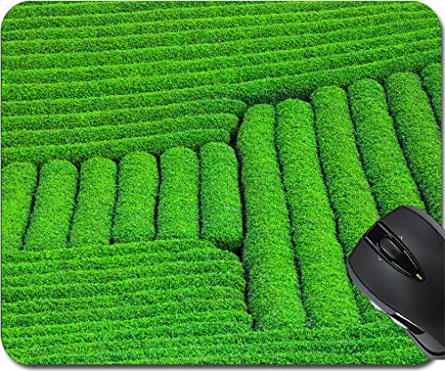 Hill Moc - MSD Mousepad Mouse Pads/Mat design 30376855 Beautiful fresh green tea plantation in Moc Chau dicstric Son La province Vietnam