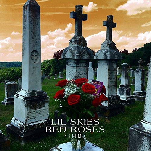 Red Roses (4B Remix) [Explicit] ()