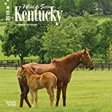 Kentucky, Wild & Scenic 2018 7 x 7 Inch Monthly Mini Wall Calendar, USA United States of America Southeast State Nature
