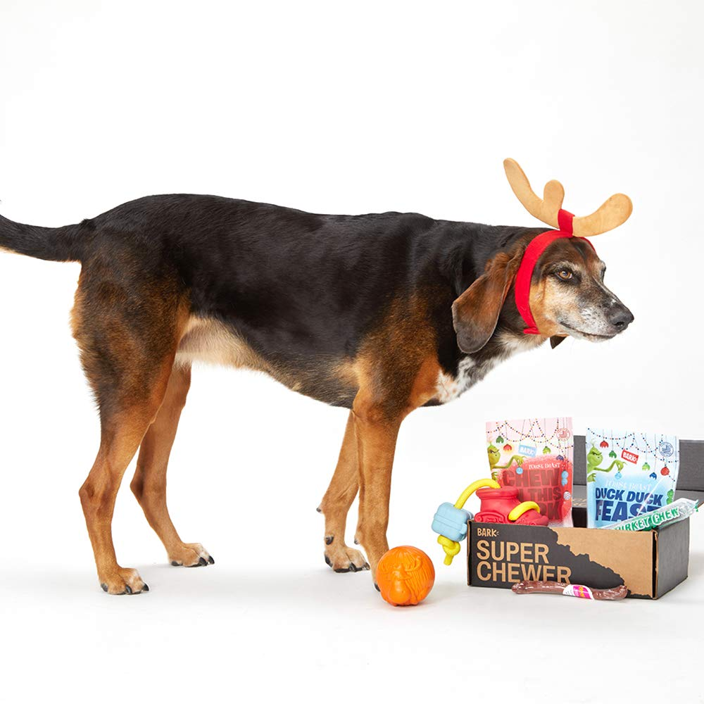 BarkBox Super Chewer Box-1 Large Dog Grinch Holiday Limited Edition Gift Durable Rubber Chew Toys, All-Natural Duck and Pork Treats/Pork, Turkey Chew Made in The USA, Plus Bonus Dog Wearable by BarkBox