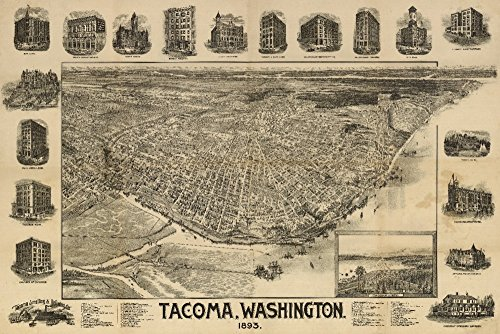 (Tacoma, Washington - (1893) - Panoramic Map (24x36 Fine Art Giclee Gallery Print, Home Wall Decor Artwork Poster))