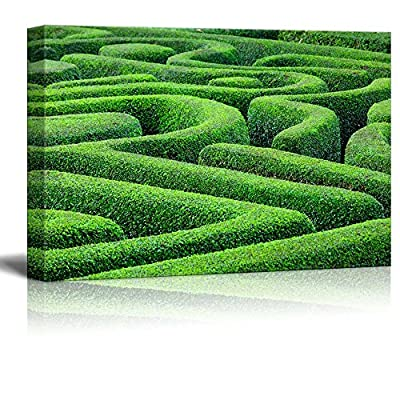 Canvas Prints Wall Art - Beautiful Scenery of Green Plant Maze | Modern Wall Decor/Home Art Stretched Gallery Canvas Wraps Giclee Print & Ready to Hang - 24