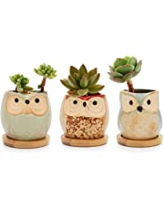 T4U Ceramic Succulent Cactus Planter Plant Pot with Bamboo Tray - Summer Trio, Small Home and Office Desktop Windowsill Bonsai Decoration Gift for Wedding Birthday Christmas Party