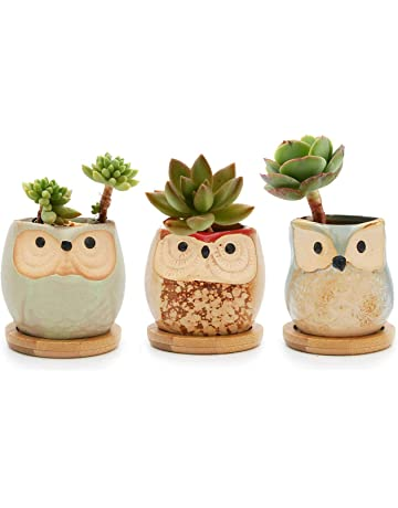 Marvelous Vases Home Accessories Home Kitchen Amazon Co Uk Home Interior And Landscaping Mentranervesignezvosmurscom