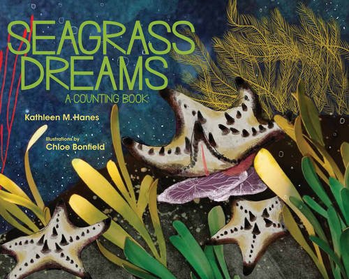 Zooplankton Coral Reef - Seagrass Dreams: A Counting Book