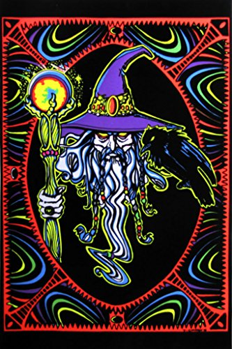 Pyramid America Wizard Mystical Whiz Crow Staff Glowing Orb Purple Hat Fantasy Psychedelic Blacklight Poster 23x35