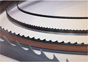 Timber Wolf Band Saw Blades, 1/4 Inch Width - Bandsaw Blades for Scrolling, Curves, Template Cutting - W 1/4 | L 131 1/2 | TPI 10 | TS RK