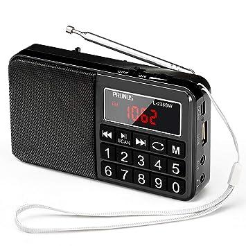 IGRNG Tarjeta multifunción Radio Mini Tarjeta Altavoz ...
