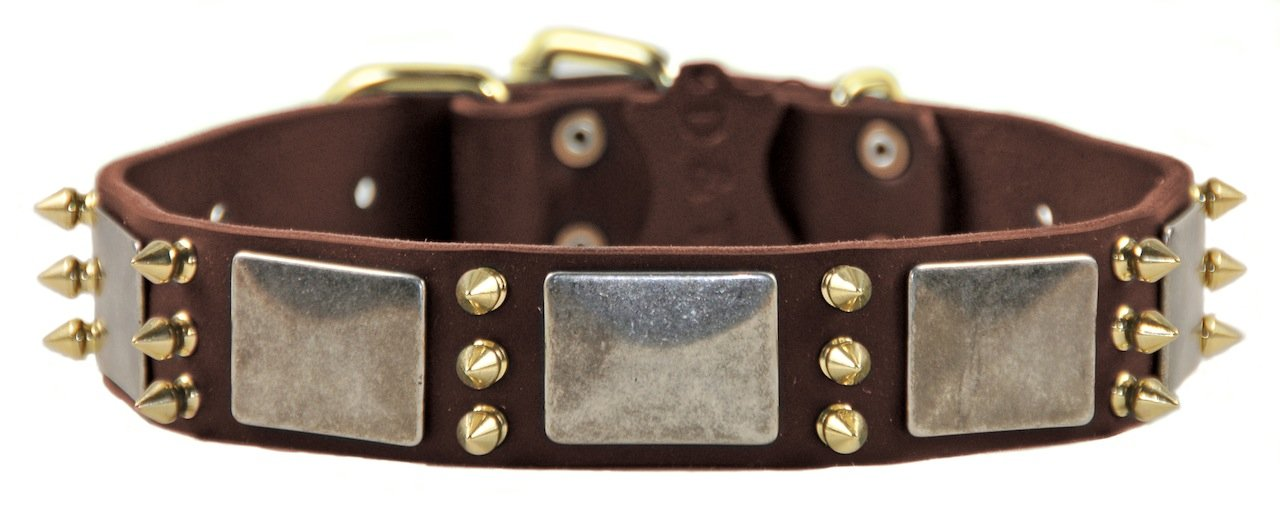 Dean & Tyler Devilish Della Dog Collar with Plates Spikes Brass Buckle, 20 by 1-1 2-Inch, Brown