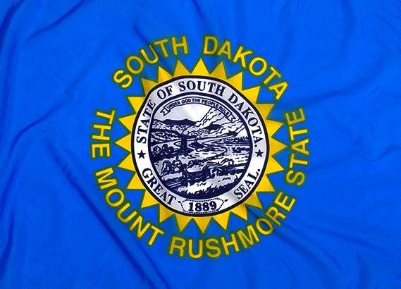 Bandera de Dakota del Sur – nailon exterior de la más alta calidad: Amazon.es: Jardín