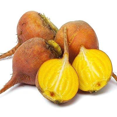 Oliote 20Pcs Garden Top Great Heirloom Vegetables Detriot Dark Red Beet Seeds Vegetables : Garden & Outdoor