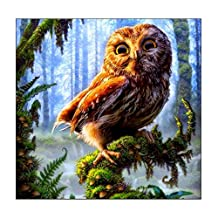3D Diamond Painting Cross Stitch Pattern 5D Embroidery Mosaic Resin Full Drill Home Decor DIY Rhinestone Pasted Painting Counted Paint By Number Kits (20x20cm, Owl in Forest)