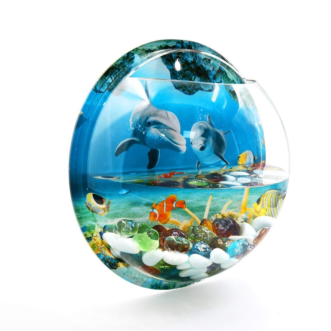 Amazon.com : ZCHXD Wall Mounted Acrylic Fishbowl Betta Tank Hanging ...