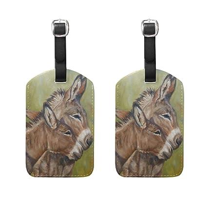Amazon.com: Pintura Donkey pareja de cuero equipaje ...